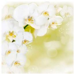 Потолочная панель ПВХ Орхидея белая